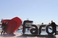 falco_stradale_en_faro
