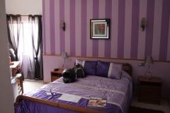 falco_stradale_en su_habitación_de_sagres